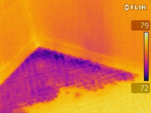 Be advised of the dangers that lurk with use of thermal imaging